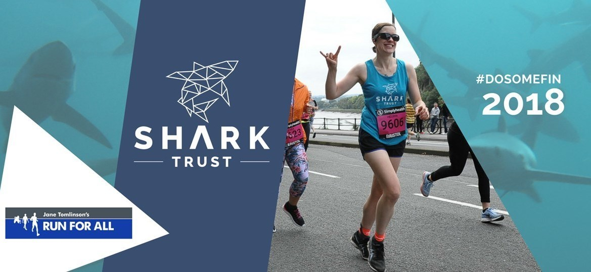 City of Lincoln 10K...for sharks!